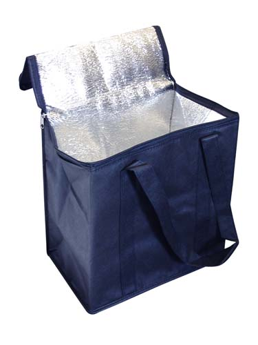 Extremely Affordable Non Woven Cooler Bag