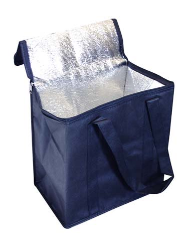 Large Non Woven Cooler Bag