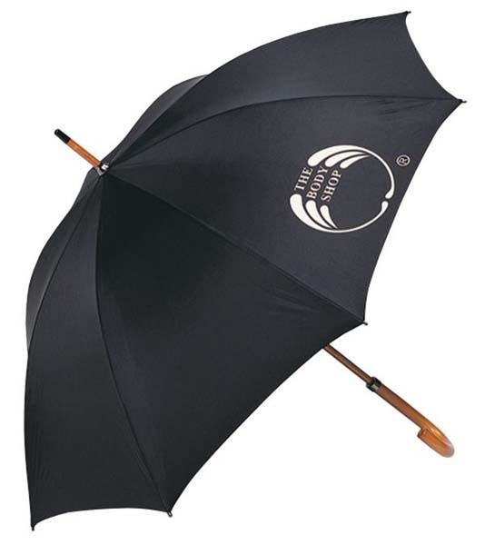 Executive Umbrella